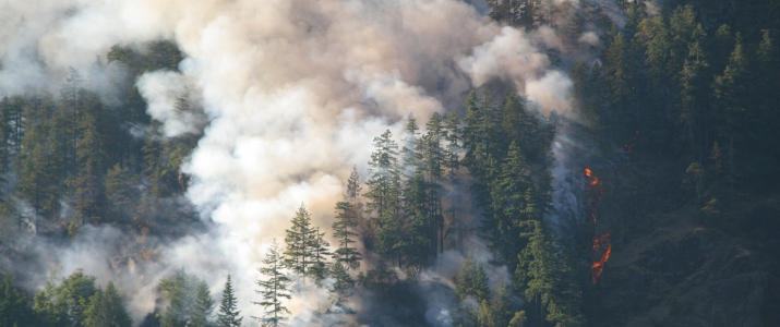 Register Today: The Health Implications of Exposure to Wildfire Smoke: In Firefighters, Other Outdoor Workers and Vulnerable Populations